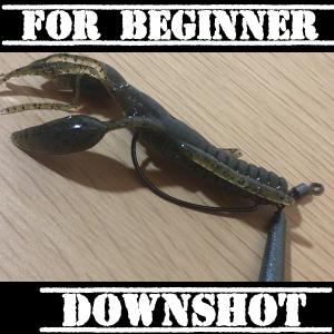 #47 初心者必携 初心者でも釣れるリグ リーダーレスダウンショット