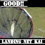 #91 バス釣りにおけるアプローチの大切さ 必携ランディングネット改