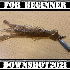#108 初心者必携 初心者でも釣れるリグ リーダーレスダウンショット2021
